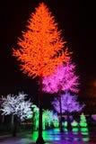 LED tree decoration Stock Images