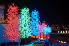 LED Tree Decoration Festival. LED Decoration Festival. Concept of energy saving, cool lighting and decoration stock photo