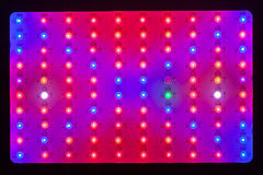 LED växer ljus textur Arkivbild
