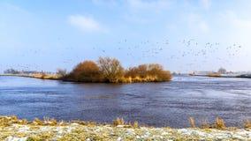 Leda flodkrökning Royaltyfri Foto