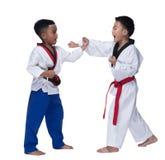Ledar- för Taekwondo för svart bälte instruktör lärare arkivbild