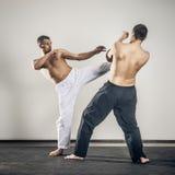 Ledar- kampsportar Fotografering för Bildbyråer