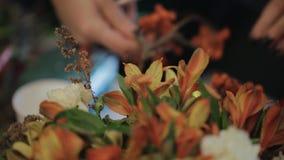 Ledar- sakkunnig blomsterhandlare för pensionär som arbetar med blommor arkivfilmer
