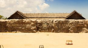 Ledare-elefant show på den HuaHin safari, Thailand royaltyfria bilder