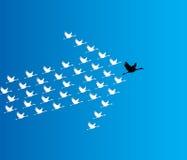 Ledarskap- och synergibegreppsillustration: Ett antal svanar som flyger mot en djupblå himmel Arkivfoton