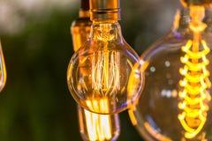 Ledd glödtrådmajskolvlampa Arkivfoton