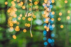 LEDD ljusgirland, färgrika ljusa kulor på en bokehbakgrund Royaltyfria Foton