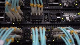 Ledde optiska lappkablar för fiber som pluggades in i en nätverksströmbrytare eller router med blinkagräsplan, ljus Stor datorhal lager videofilmer