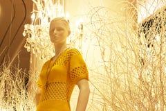 Ledenpop in de opslag van de kledings dichte omhooggaand van vrouwen royalty-vrije stock foto