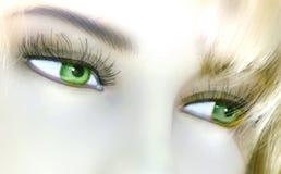 Ledenpop, Groene ogen Stock Afbeelding