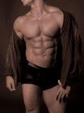 Lederfarbener Muskelkasten Stockbild