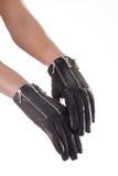 Lederhandschuhe Stockfoto