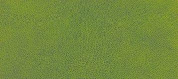 Lederne grüne Beschaffenheit Lizenzfreie Stockbilder