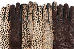 Lederne Handschuhe der Frauen Stockfotografie