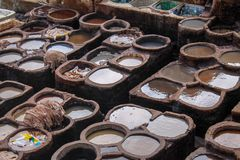 Ledernes Sterben in einer traditionellen Gerberei in der Stadt von Fez lizenzfreie stockfotografie