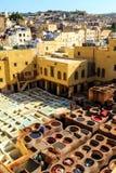 Ledernes Sterben in einer traditionellen Gerberei in Fes, Marokko Lizenzfreie Stockbilder