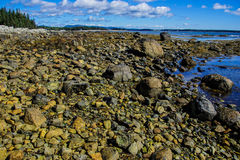 Ledges and granite pebbles Royalty Free Stock Photo