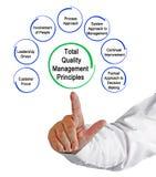 Ledningprinciper för sammanlagd kvalitet Arkivbilder