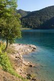 Ledro lake shore, lake in Trentino, Italy. Lake Ledro is one of the cleanest lakes in Trentino, it is possible to practise a lot of different sports stock photography