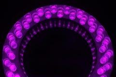 LEDs Royalty Free Stock Photo