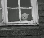 Ledsen ensam nalle på fönstret royaltyfri fotografi
