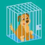 Ledsen hund i bur sitting Arkivbilder