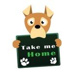 Ledsen hund i djurt skydd Royaltyfria Bilder