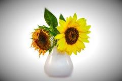Ledsna blommor Royaltyfri Foto