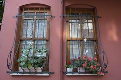 Ledstångfönster Arkivbilder