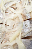 śledziowy cebulkowy surowy Zdjęcie Stock