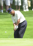 Lee Trevino royaltyfri foto
