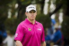 Lee Westwood - NGC2011 Stock Photos