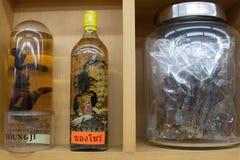 Leeches scorpionen, orm, övervakar ödlan Fotografering för Bildbyråer
