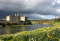 Leeds Castle in Kent, United Kingdom. With blooming daffodils and dramatic sky stock photos