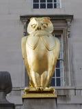 Leeds guld- ugglaskulptur mot väggen Royaltyfria Foton