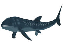 Leedsichthys Fish over White. Leedsichthys was a carnivorous fish that inhabited Jurassic Seas that could grow to be 53 feet long stock illustration