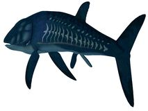 Leedsichthys Fish Tail royalty free stock photo