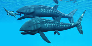 Leedsichthys Ocean Fish. Leedsichthys was a giant extinct fish from the Jurassic Seas. Here one is about to swallow an Ichthyosaurus marine reptile vector illustration