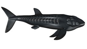 Leedsichthys prehistoric fish - 3D render Stock Photography
