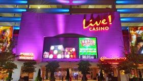 Leef casino Royalty-vrije Stock Foto's