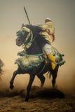 Leef folklore tonen royalty-vrije stock afbeeldingen