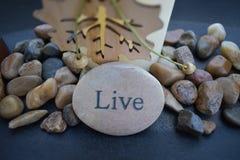 Leef, geschreven in steen! stock foto