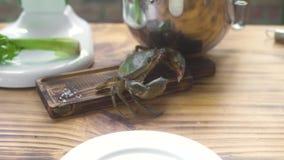 Leef krab lopend op houten lijst bij het restaurant van keukenzeevruchten Overzeese krab alvorens in zeevruchtenrestaurant te kok stock footage