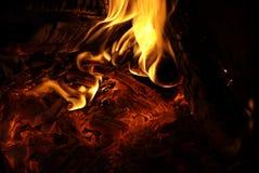 Leef steenkool Stock Foto's