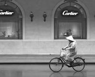 Leef van Hanoi, Zwarte & Wit Stock Foto's
