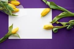 Leeg document met gele tulpen op proton purpere textielachtergrond De lenteachtergrond met ruimte voor tekst De de lentetulpen bl royalty-vrije stock fotografie