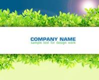 Leeg Document op Groene bladeren Royalty-vrije Stock Foto's