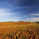 Leeg en droog landelijk landschap Stock Afbeeldingen