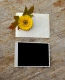 Leeg fotoframe Royalty-vrije Stock Foto