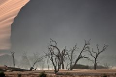 Leeg landschap van Namib-woestijn Stock Foto